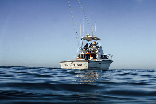 the Por Vida owned and operated by Pacific Ocean Charters